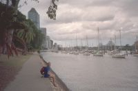 001 - Rast am Brisbane River