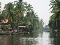 005 - Lake Vembanad