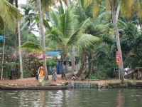 007 - Lake Vembanad